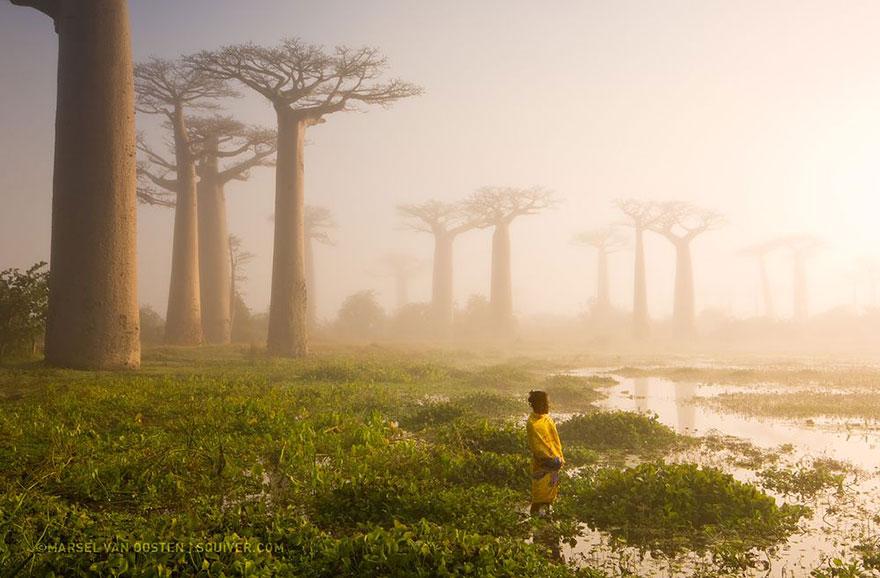 National Geographic en iyiler 7