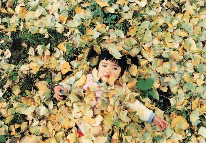 4 yaşındaki japon gezgin12