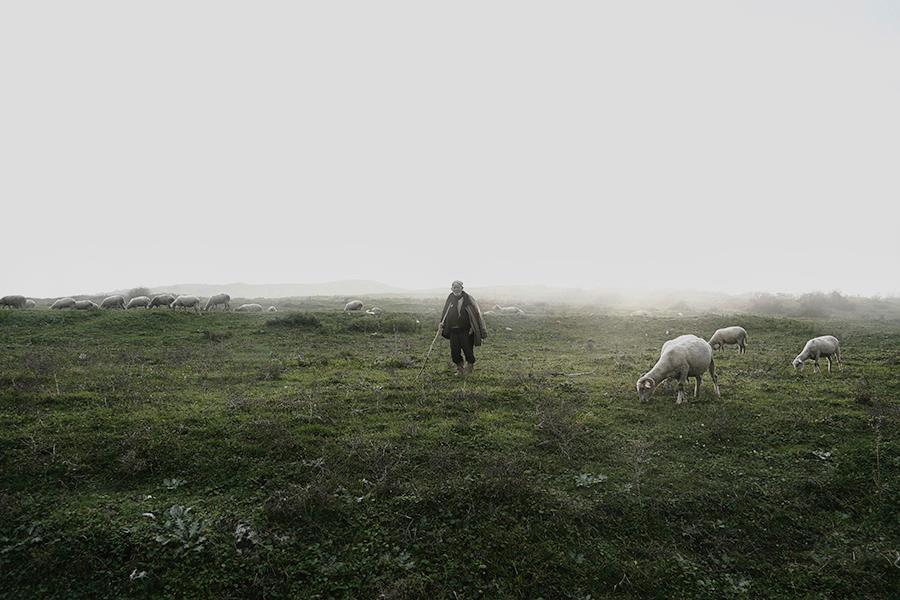 çerkes köyleri denef huvaj